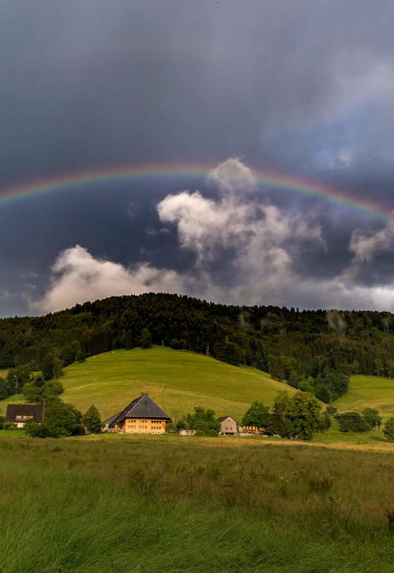 Regenbogen Dreisamtal