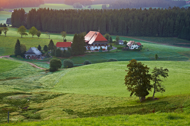 Oberfallengrundhof bei Gütenbach