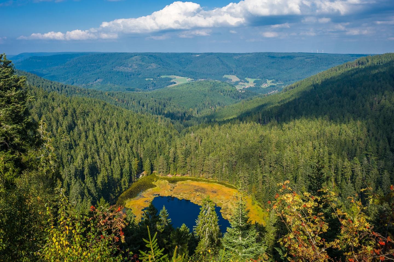 Huzenbacher See Baiersbronn ©123RF