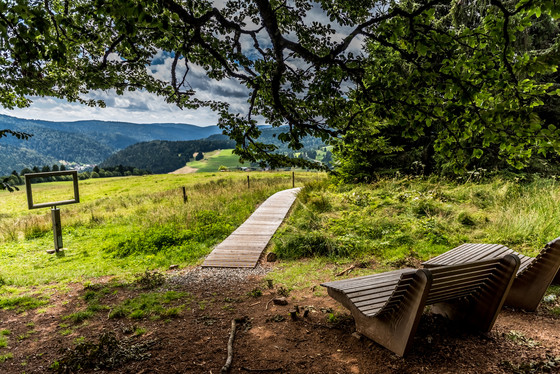 Schwarzwälder Genießerpfad Lebküchlerweg Todtmoos