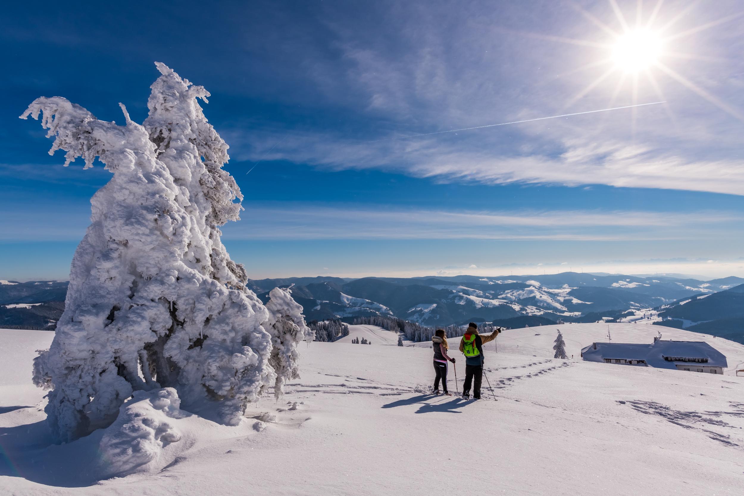Winter Schwarzwaldregion Belchen