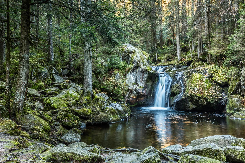 Wasserlauf mit Gumpe im Schwarzwald © Michael Spiegelhalter/Schwarzwald Tourismus