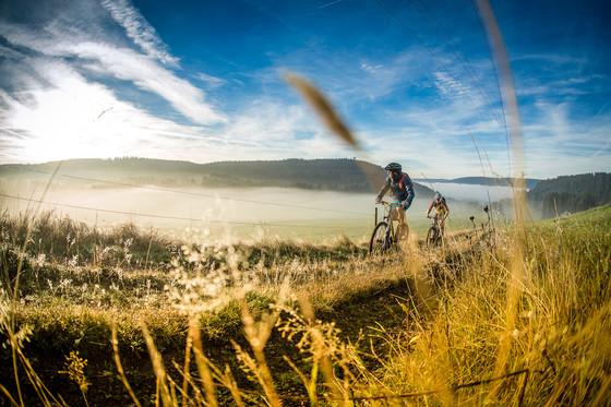 Mountainbike im Schwarzwald © Daniel Geiger/Centurion