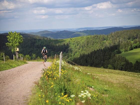Angebote Rad- und Wanderparadies Rad