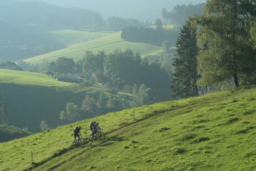 Bike Crossing Schwarzwald Morgenstimmung
