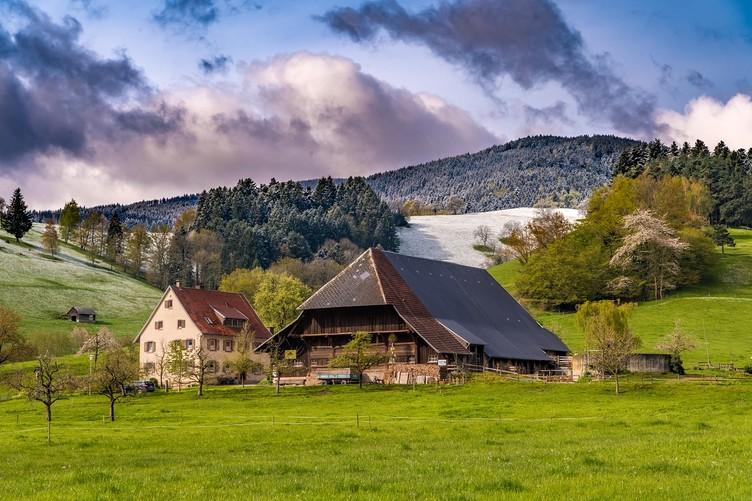 Jungbauernhof, einer von vielen Höfen im Dreisamtal