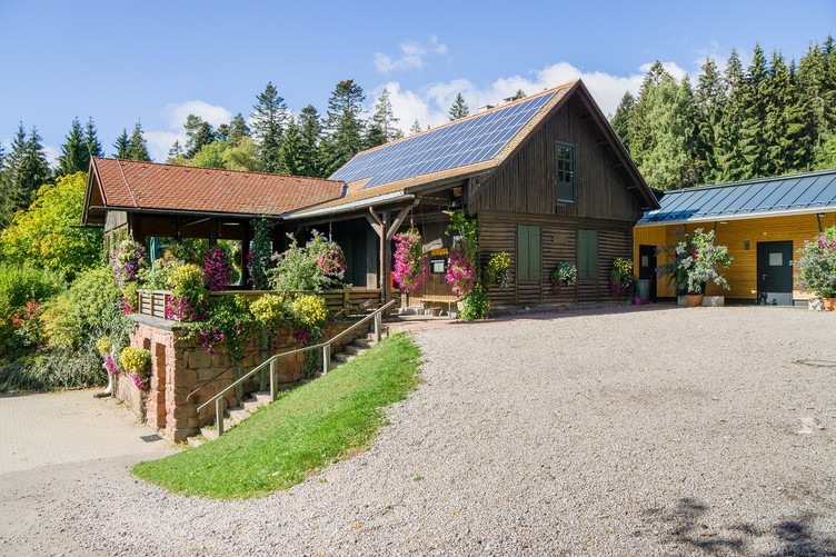 Grünhütte Bad Wildbad