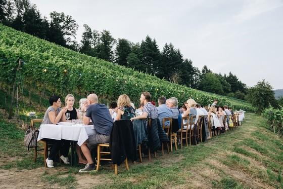 tafelVine © Chris Keller / STG