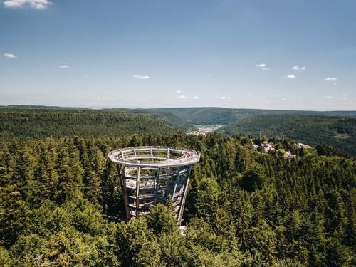 Bad Wildbad Baumwipfelpfad © Chris Keller / STG