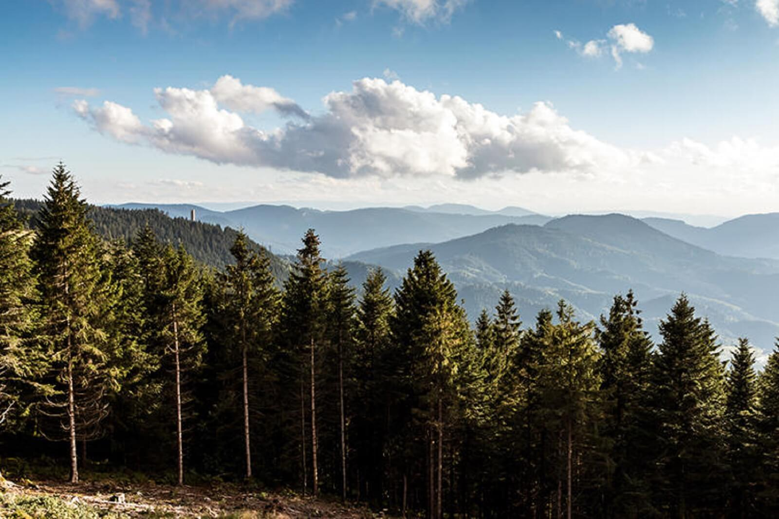 7 Tage auf dem Renchtalsteig über Berg und Tal
