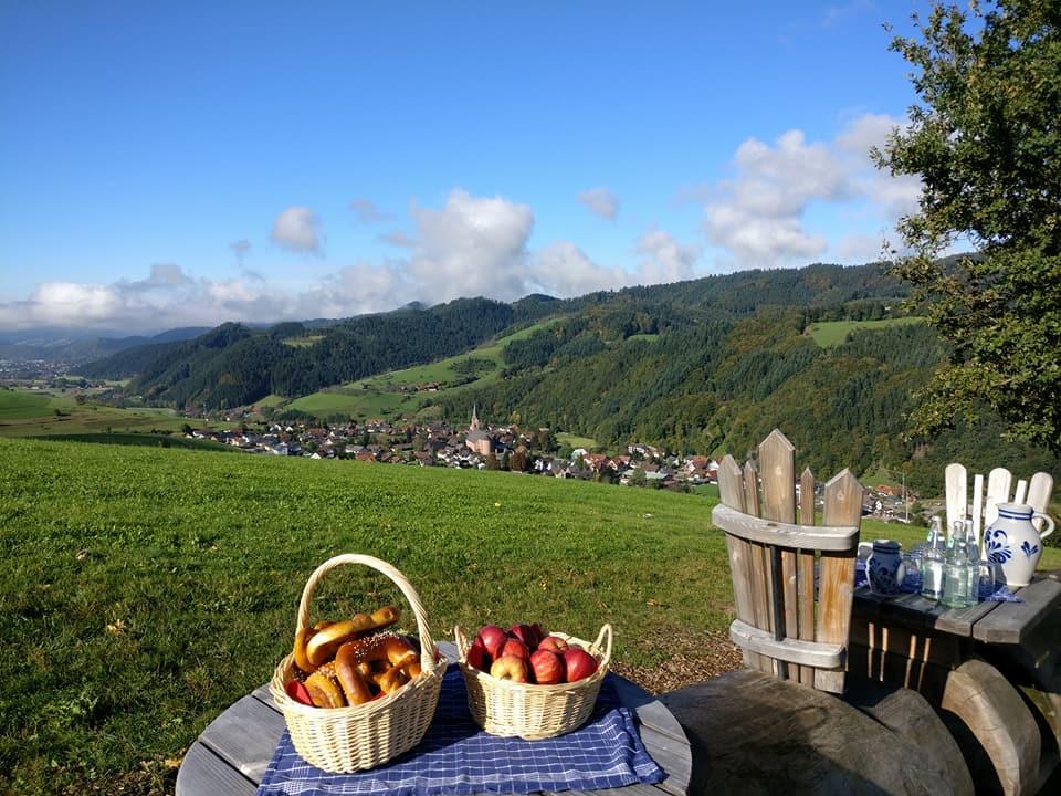 Apfel-Most-Wochen_Ein geführter Spaziergang führt zur langen Baumstamm-Bank auf dem Premiumweg
