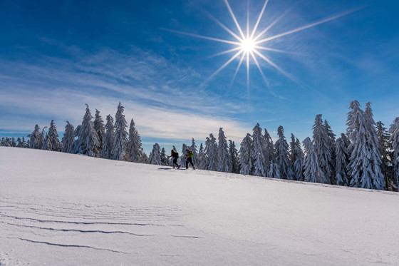 Schneeschuhwandern Belchen © Klaus Hansen
