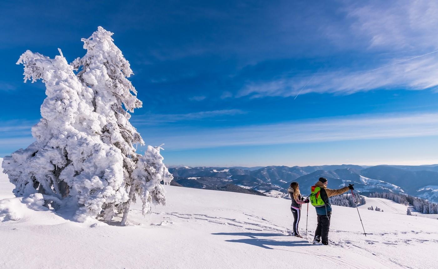 Schneeschuhwandern Belchen
