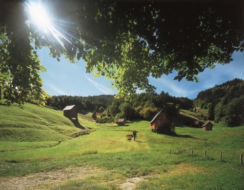 Heuhüttental Mugtal © Zweckverband im Tal der Murg
