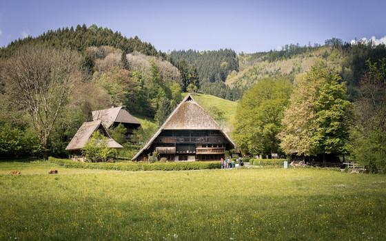 Vogtsbauernhof in Gutach © Chris Keller / STG