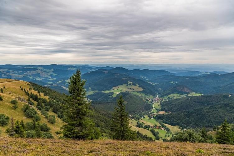 Berge Aussicht Belchen Schwarzwald Köpfe