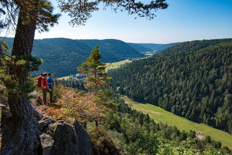 Albsteig Schwarzwald Dachsberg Bildsteinfelsen