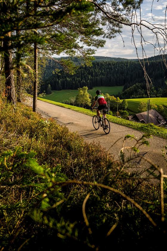 auf dem Rennrad durch den Süd-Schwarzwald