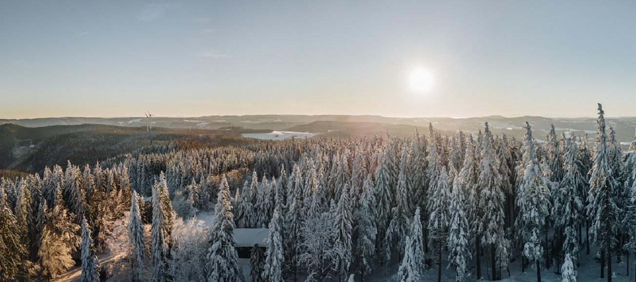 Winterlandschaft auf dem Kandel