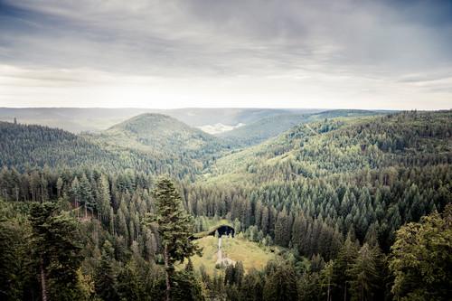 Blick vom Ellbachseeblick auf Baiersbronn und die Nationalparkregion Schwarzwald