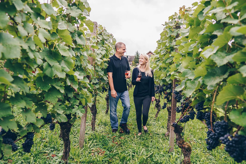 Erlebnis im Weinberg - Wein Spaziergang durch die Reben