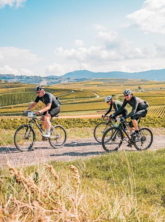 Gravel Rallye Rhine Valley 2020