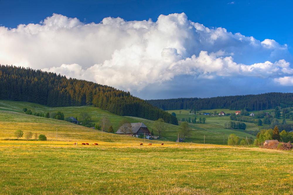Bauernhof in Langennordnachtal © Erich Spiegelhalter/Schwarzwald Tourismus