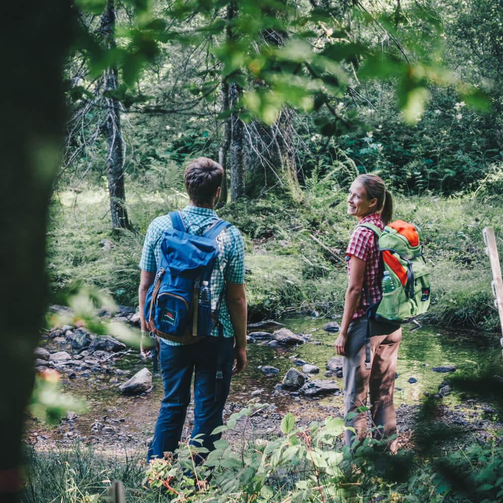 Wanderer im Schwarzwald © Schwarzwald Tourismus GmbH