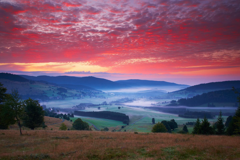 Morgennebel bei Bernau