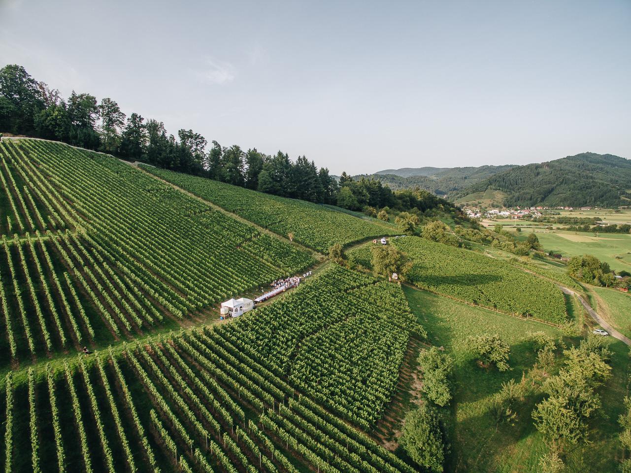 Essen und Trinken im Weinberg/ tafelvine © Chris Keller / STG