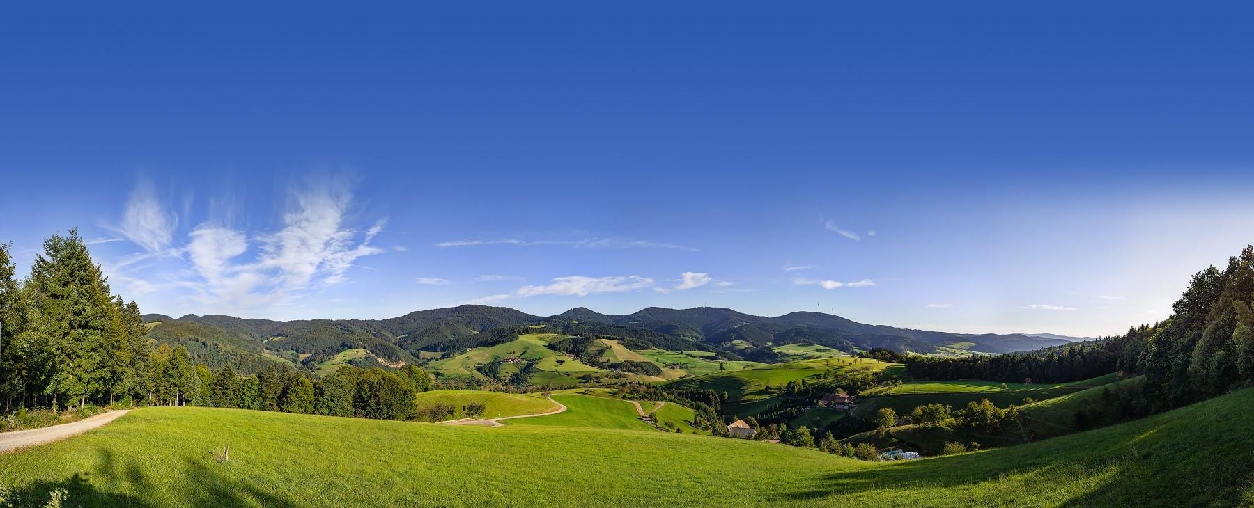 Panorama AugenBlick Oberharmersbach Hermersberg