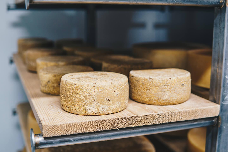 Conni's Käsemanufaktur - der Käse reift