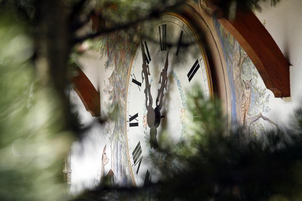 Schwarzwalduhr Ausschnitt Ravennaschlucht
