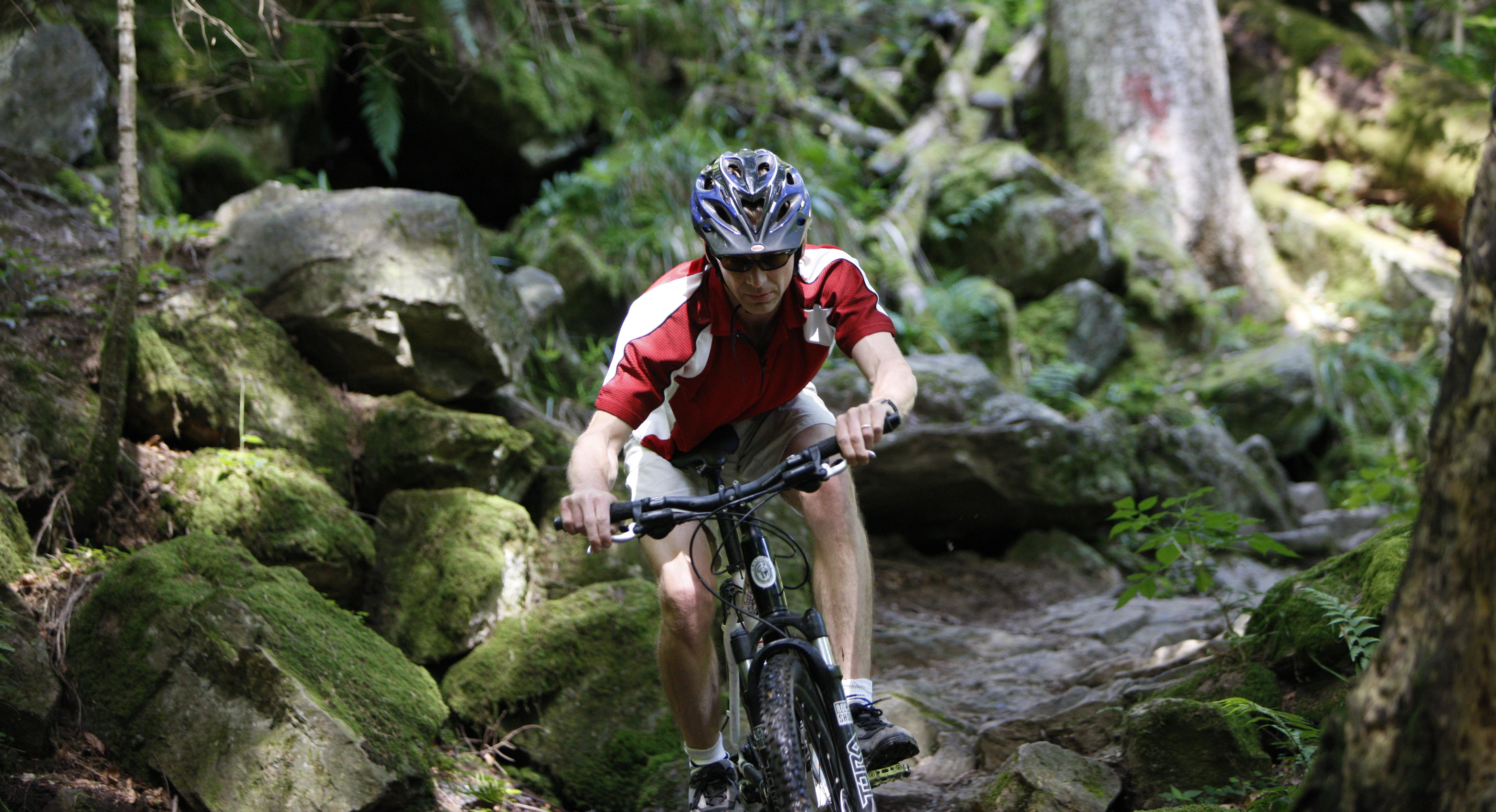 Mountain Bike Fahrer Wald © Christoph Eberle/STG