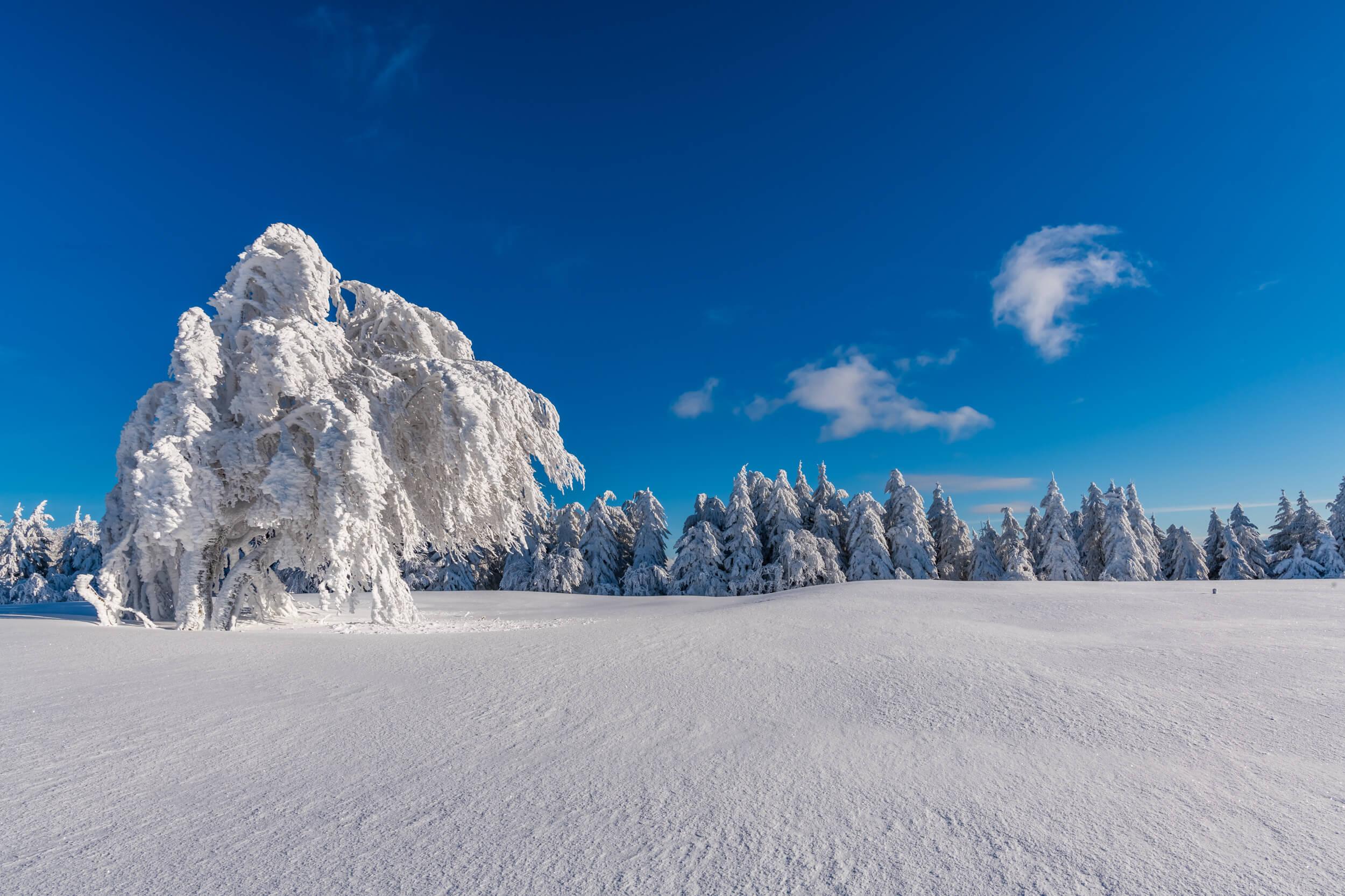 Schauinsland Winterwunderland © Klaus Hansen