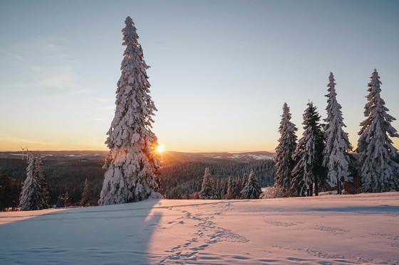 Wintertraum © Chris Keller / STG