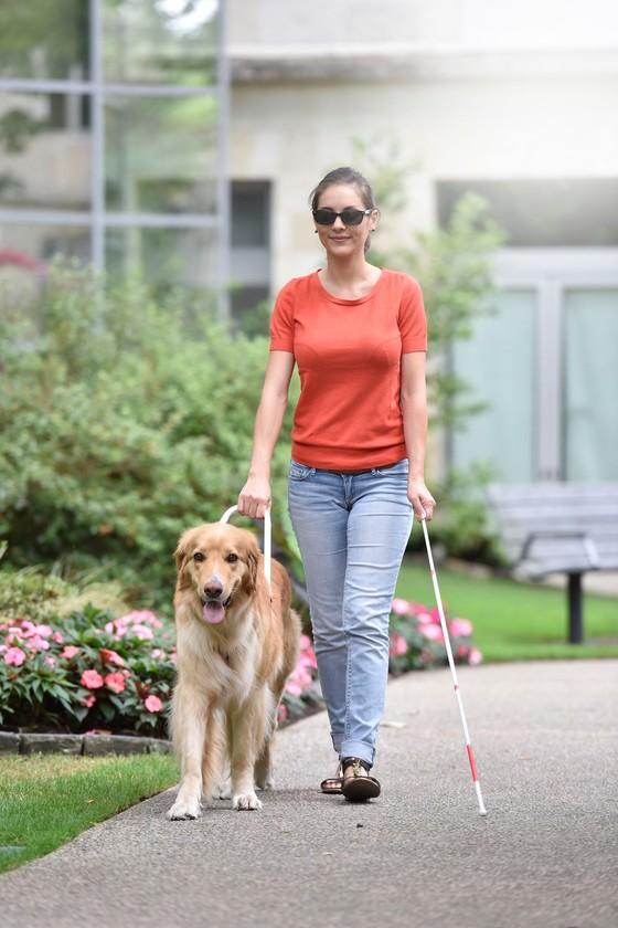 Frau mit Sehbehinderung und Begleithund geht spazieren