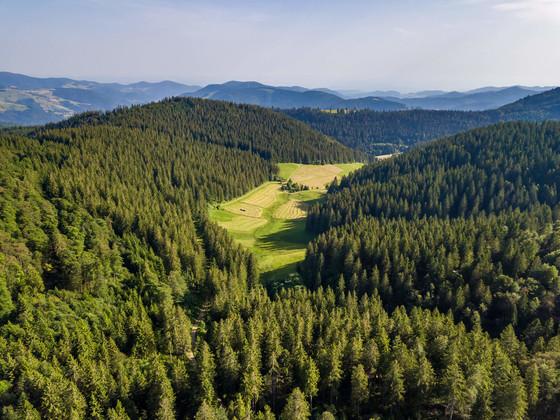 Schwarzwaldregion Belchen © Klaus Hansen