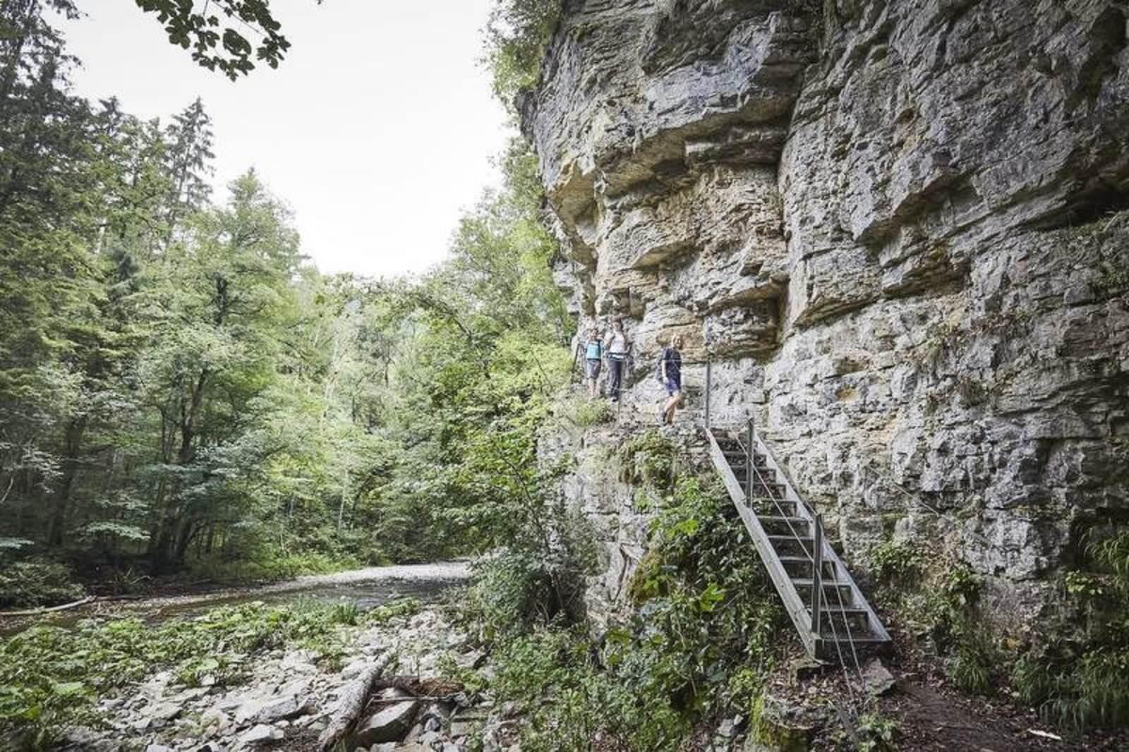 Wutachschlucht Treppe