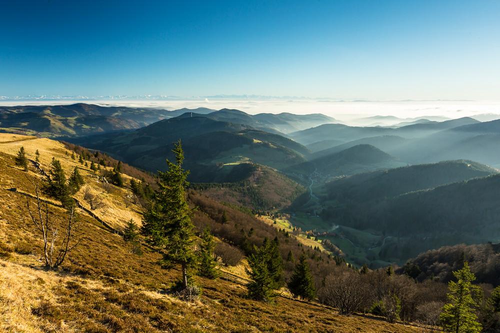 Ausblick vom Belchen © Michael Spiegelhalter/ Schwarzwald Tourismus