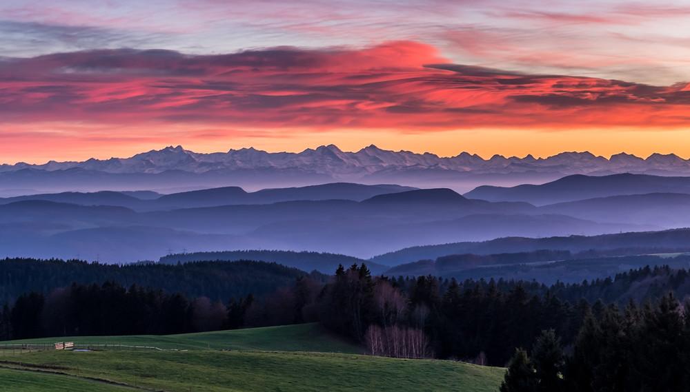 Schwarzwald Panorama