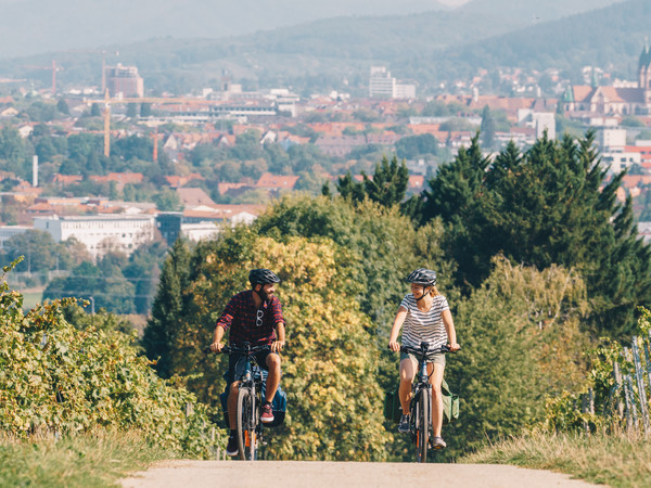Badischer Weinradweg Radeln, Aussicht