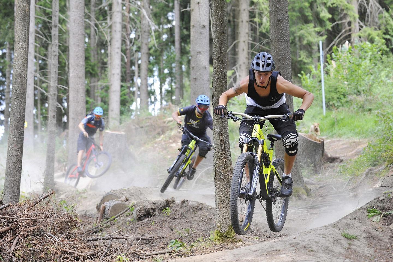 Schellenberg Trail