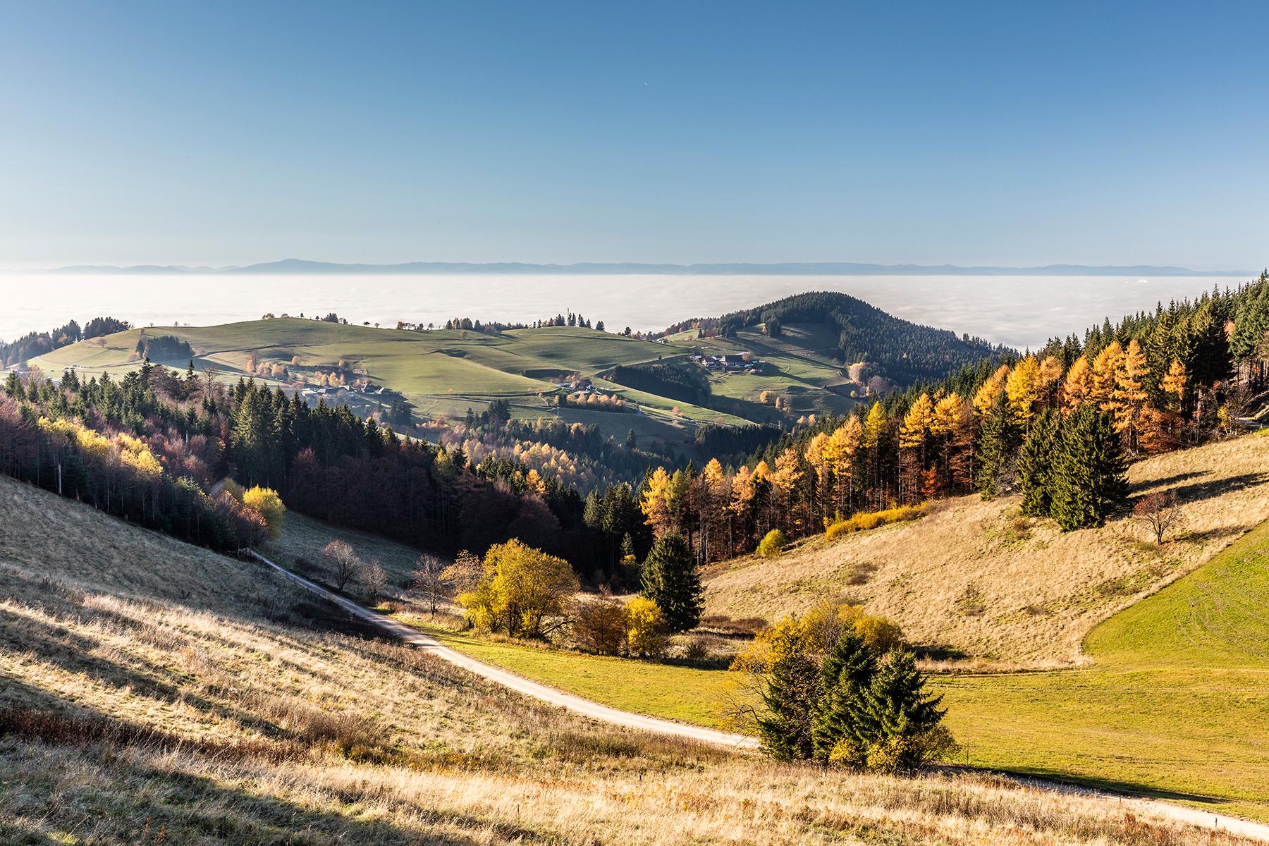 Herbst Panorama © Michael Spiegelhalter / Schwarzwald Tourismus