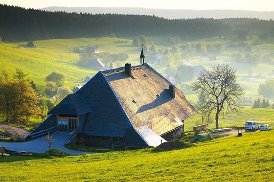 Hirtenpfad Image © E.Spiegelhalter/Hochschwarzwald Tourismus GmbH