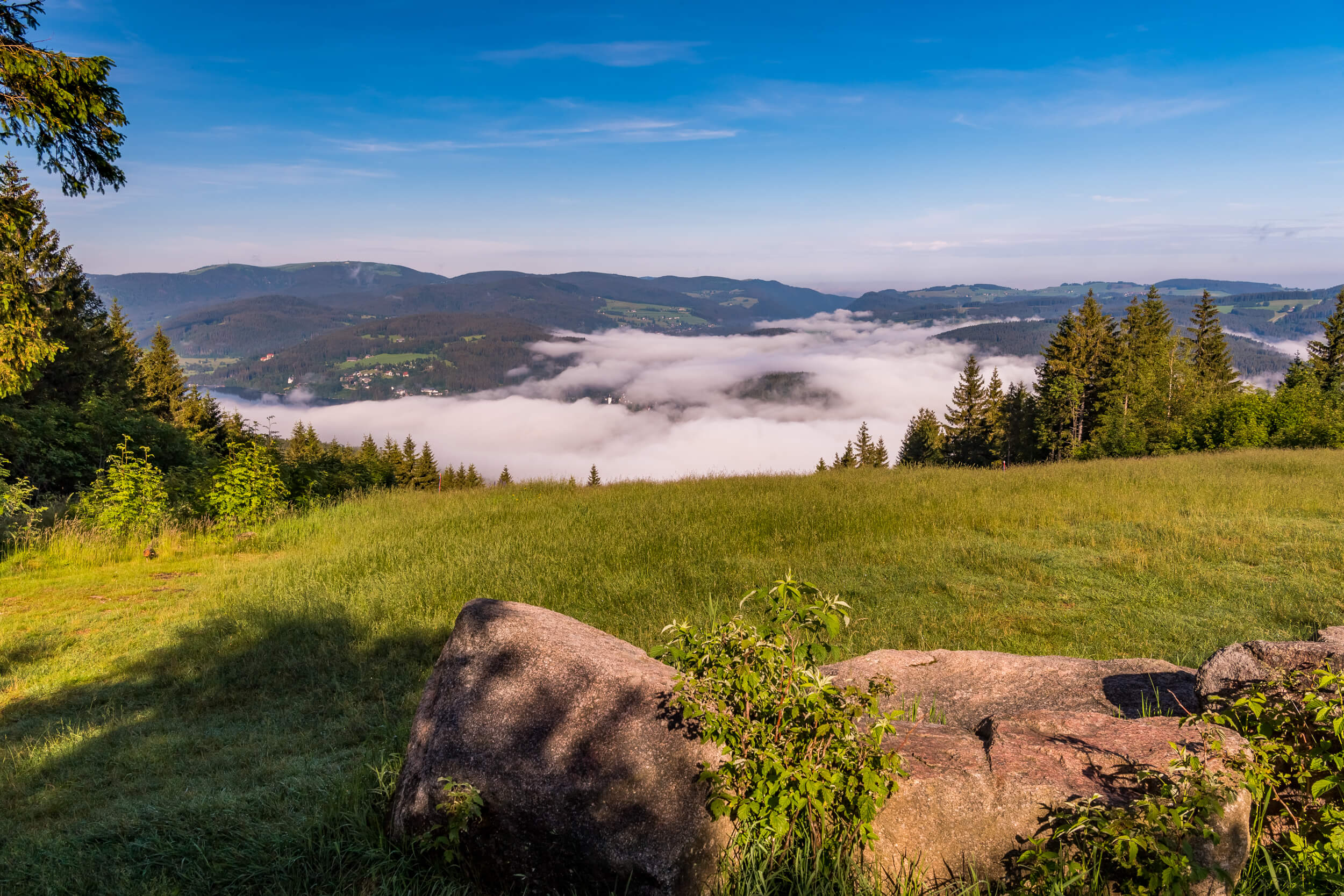 Hochfirst Panorama © Klaus Hansen