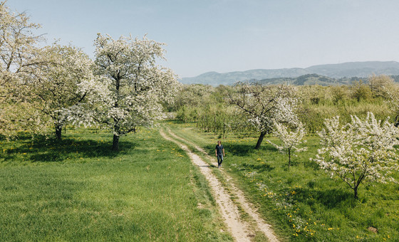 Frühling Oberkirch © Chris Keller / STG