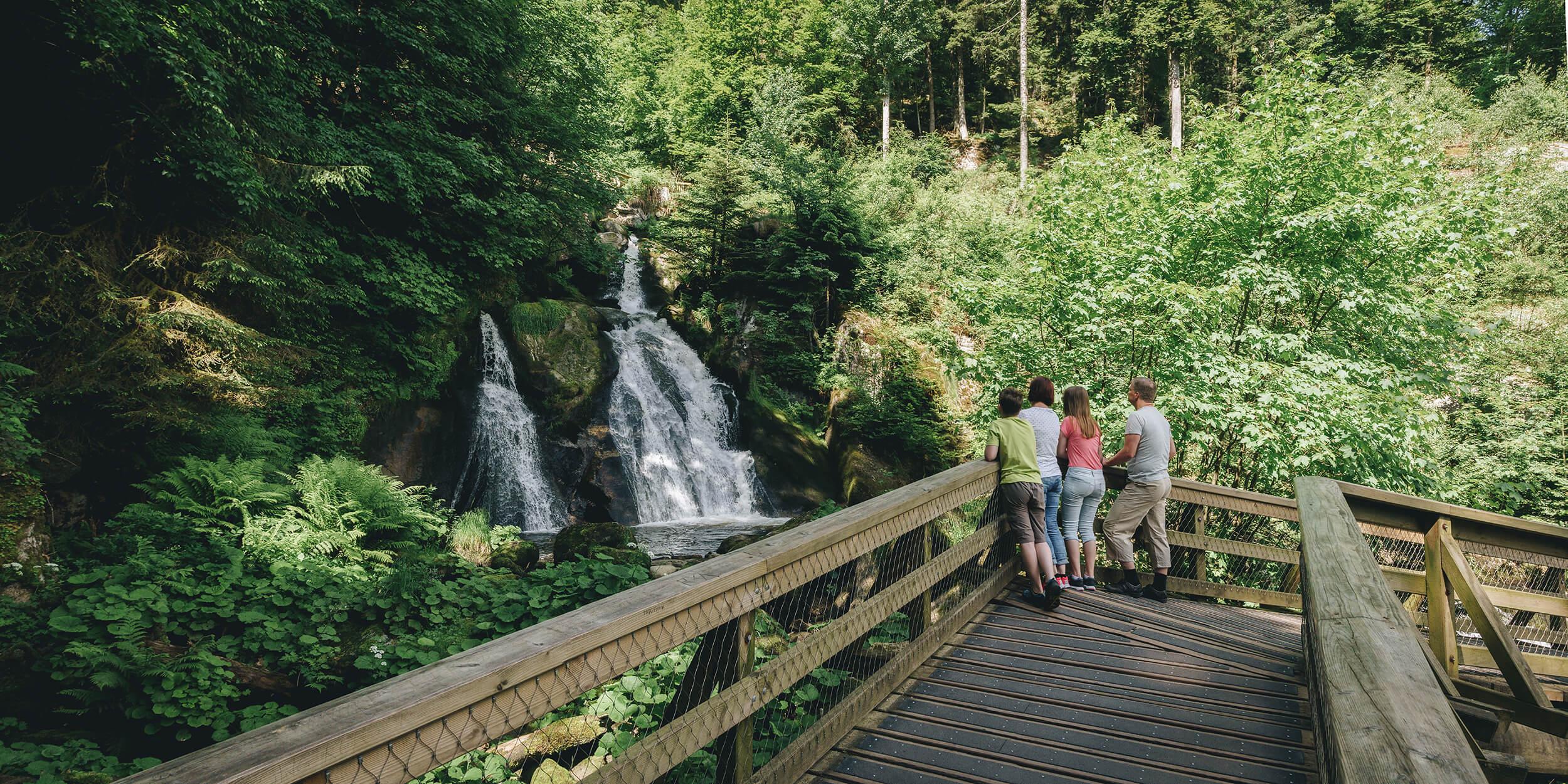 Naturbeobachtung Wasserfall