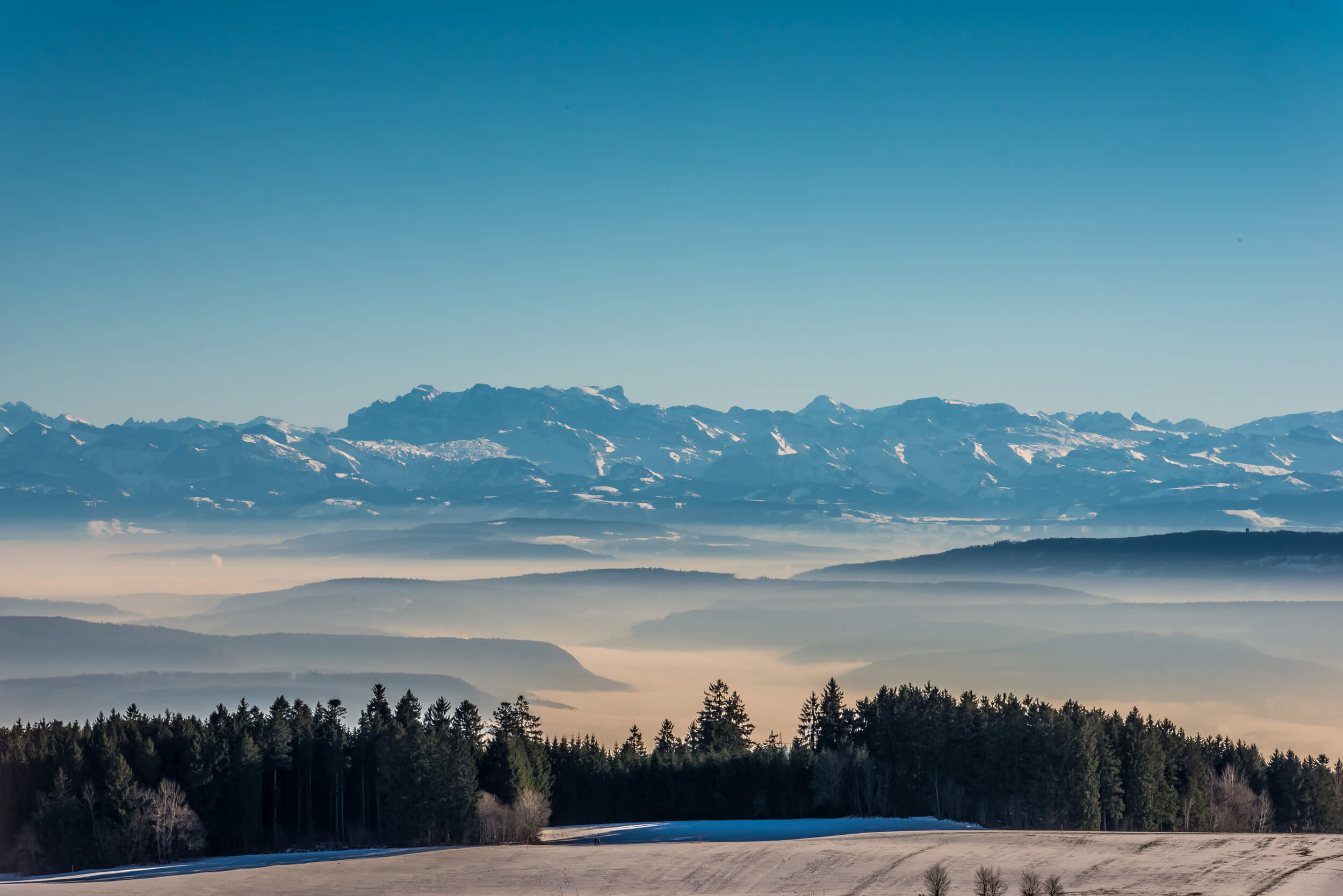 Höchenschwand Alpenblick © Klaus Hansen