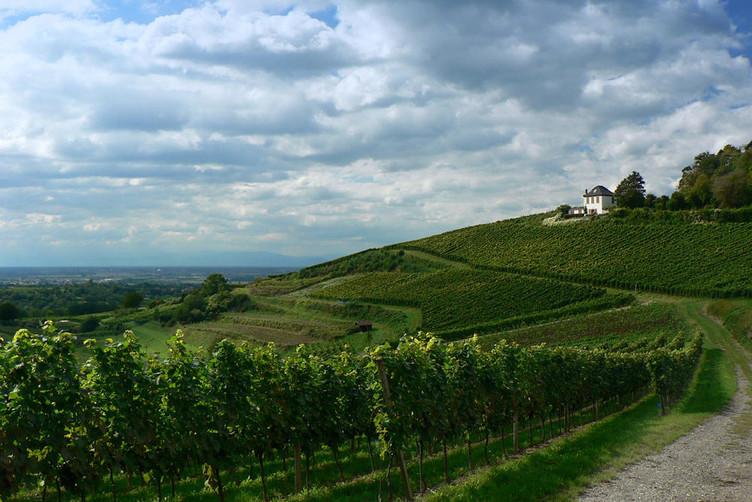 Kippenheim in der Ortenau